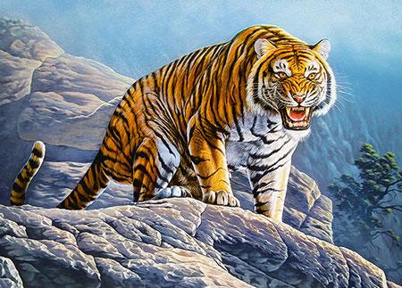 tiger-auf-dem-berg
