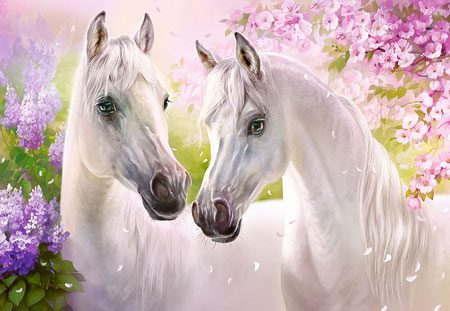 Pferde im Liebesglück
