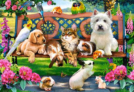 Tiere im Park
