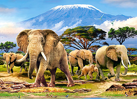 elefanten-am-kilimanjaro