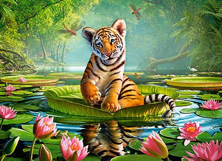 tigerbaby-auf-der-wasserlilie