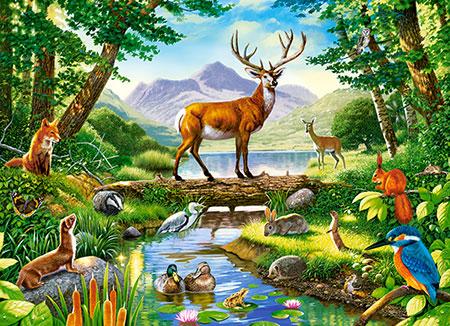Harmonische Waldtiere