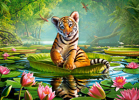 Kleiner Tiger auf der Wasserlilie