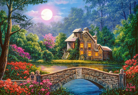 Idyllisches Haus im Mondglanz