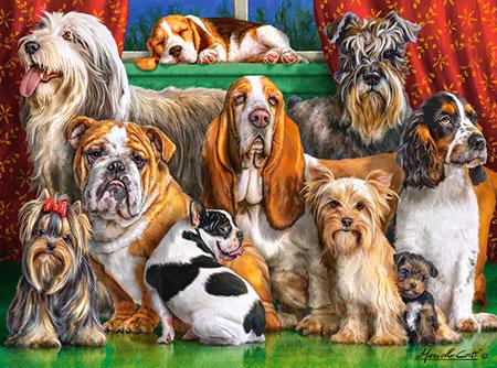Der Hunde-Club