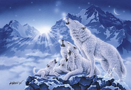 Wolfsrudel im Mondschein