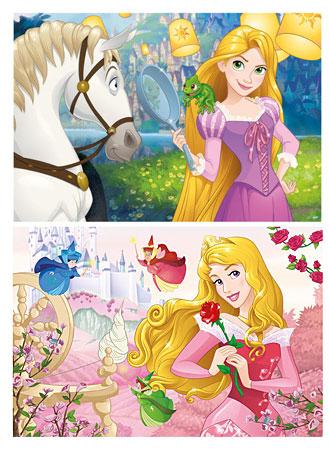 Disney Prinzessinnen - Bezaubernde Schönheiten
