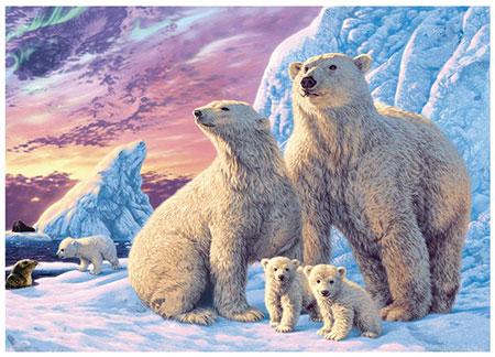 Secret Puzzle - Polarbären