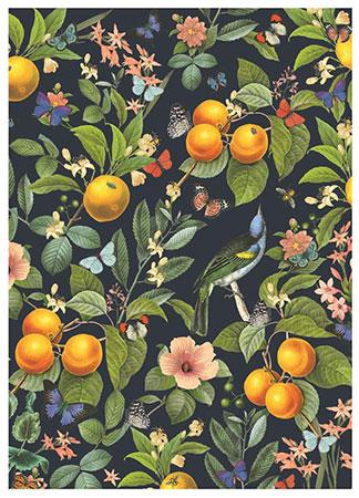 Blühende Orangen