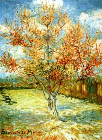 Blühender Pfirsichbaum
