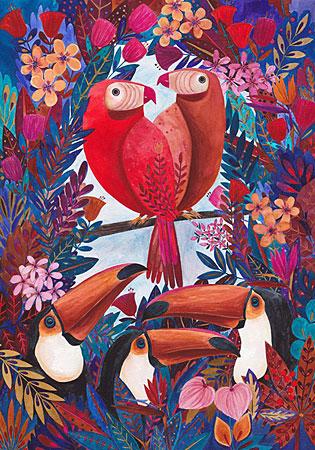 Papagei, Kürti
