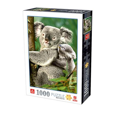 Niedliche Koalas