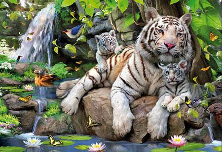 bengalische-wei-e-tiger