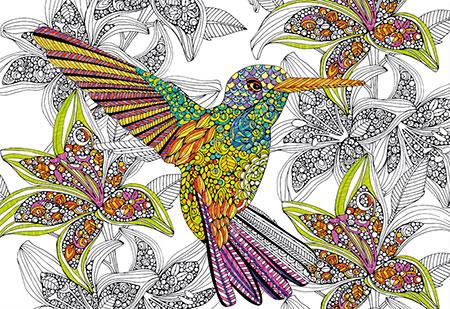 ausmalpuzzle-doodle-art-kolibri