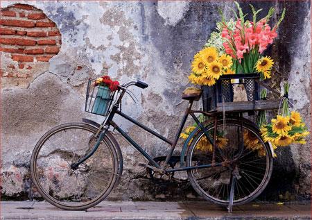 Fahrrad mit Blumen