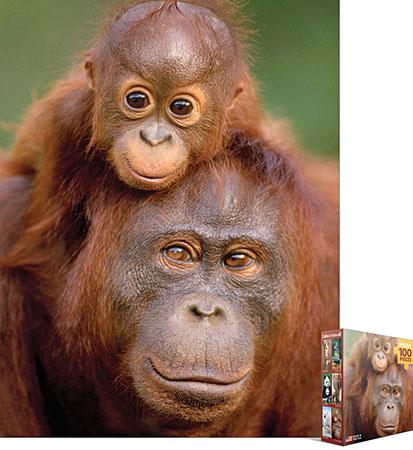 Affenmama und ihr Baby