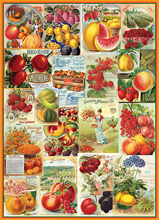fruchtsamen-collage