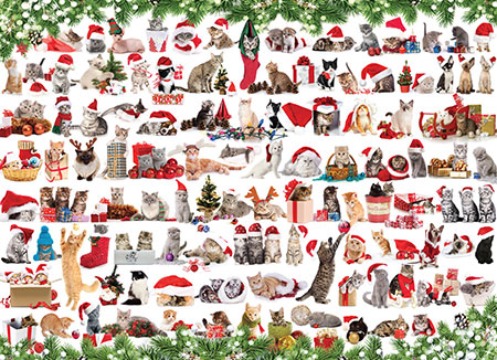 Katzen in Weihnachtsstimmung