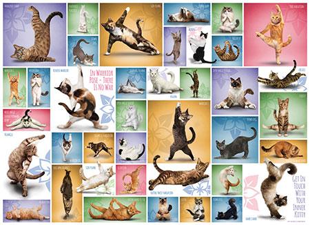 collage-yoga-katzen
