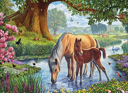 pferde-im-bach