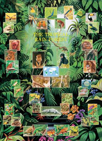 eurographics 6000 2790 tiere im tropischen regenwald. Black Bedroom Furniture Sets. Home Design Ideas
