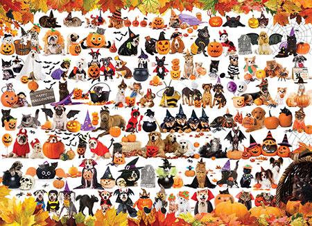 halloween-tiere