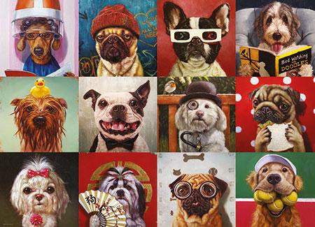 lustige-hunde
