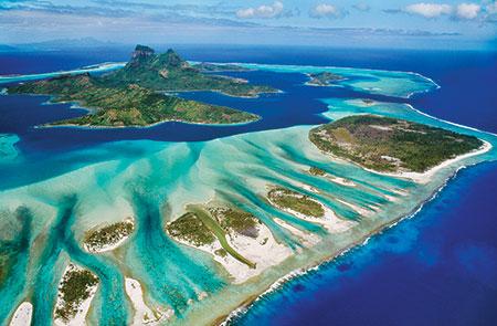 rette-den-planeten-korallenriff