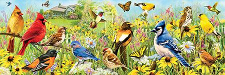 vogel-im-garten