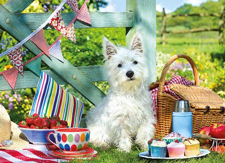 Scottie Hunde Picknick