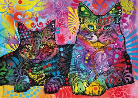Magisch fesselnder Blick der Katzen