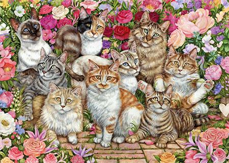 Katzen im Rosengarten