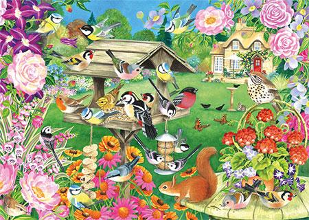 Sommervögel am Futterhaus