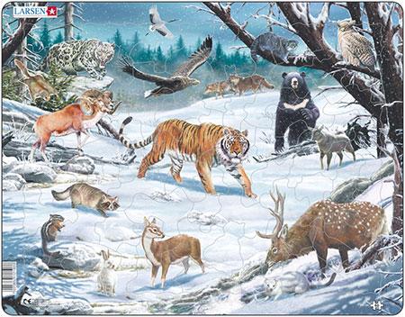tiere-in-sibirien-und-fernost