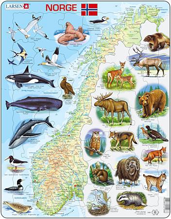 physische-karte-norwegen-mit-tieren