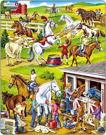 Auf dem Pferdegestüt