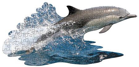 Delfin Junges
