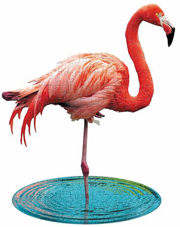 Flamingo Kücken
