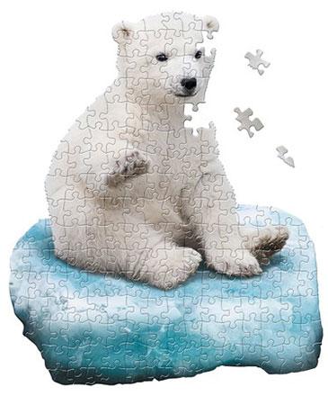 Eisbären Junges