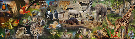 Afrikanisches Wildleben (mehr als 50000 Teile!)
