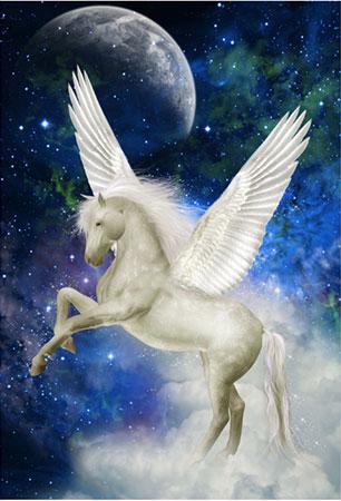 Magic Silver - Pegasus