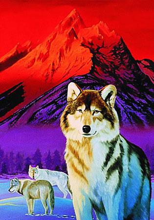 faszination-wolfe
