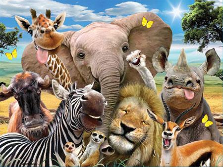 3D Effekt - Afrika-Selfie