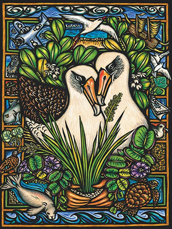 albatross-duo