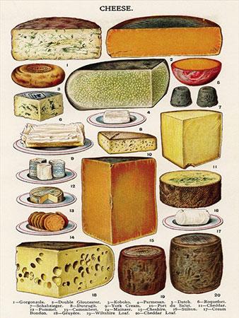 Käsesorten - Collage