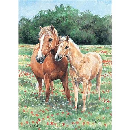 Kuschelnde Pferde