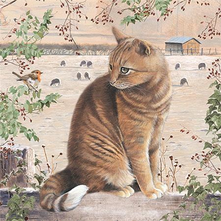 Katze auf dem Gartenzaun