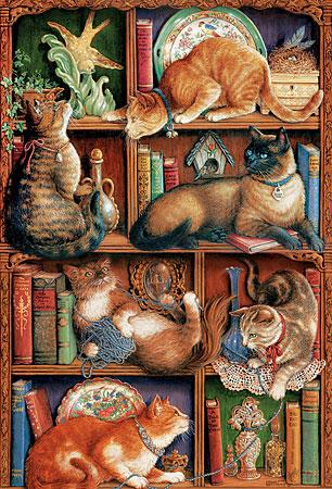 Katzen im Bücherregal