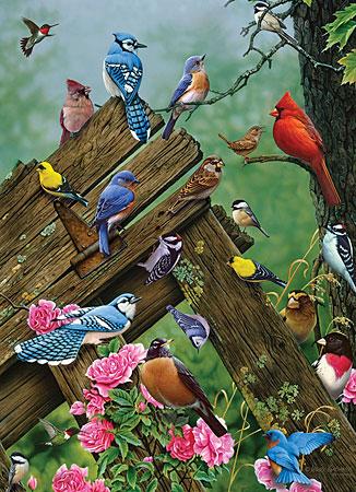 vogel-des-waldes