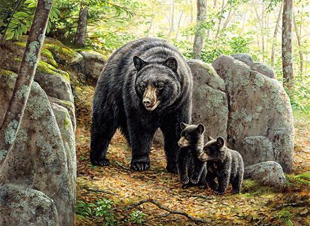 Bärenmama mit ihren Jungen